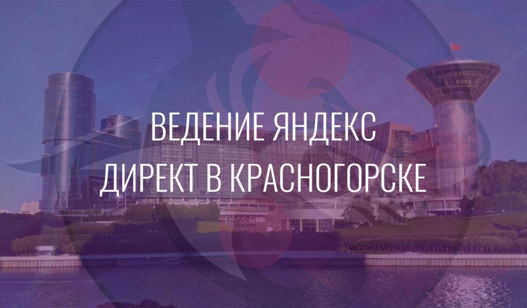 Ведение Яндекс Директ в Красногорске