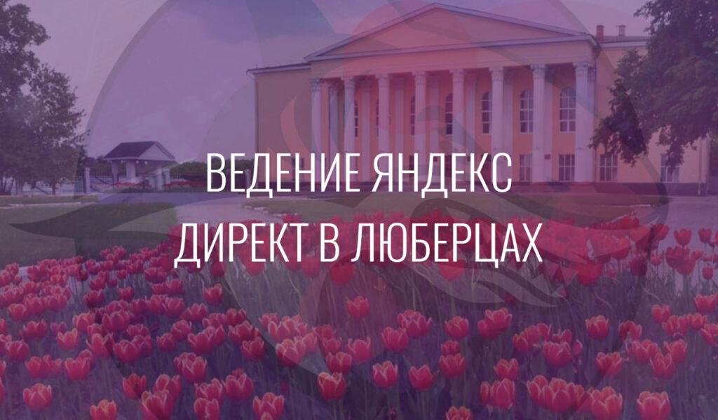 Ведение Яндекс Директ в Люберцах