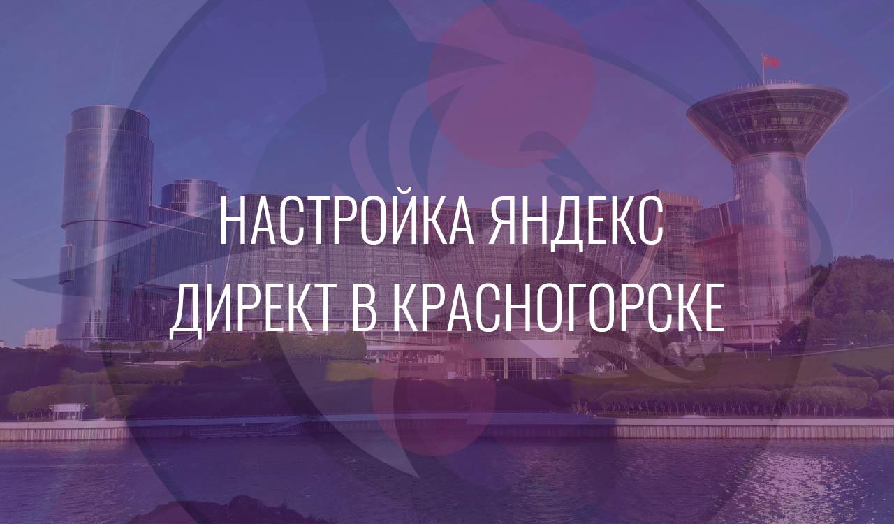 Настройка Яндекс Директ в Красногорске