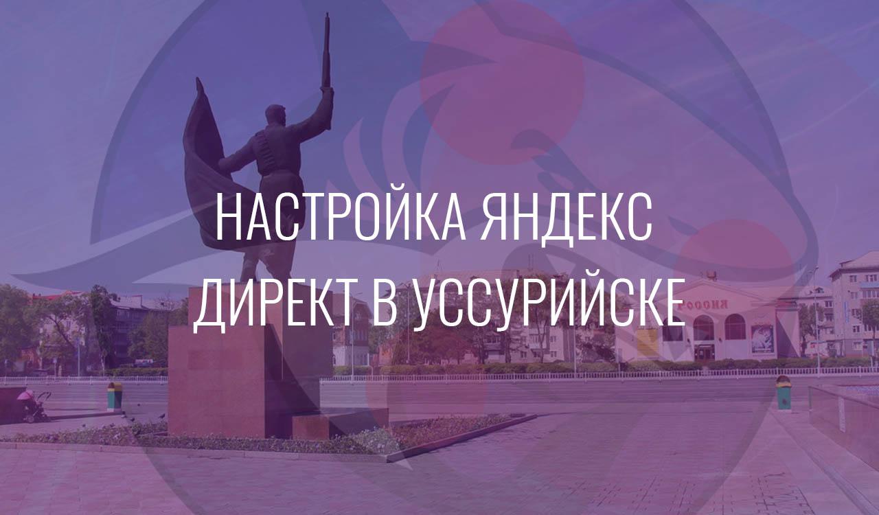 Настройка Яндекс Директ в Уссурийске